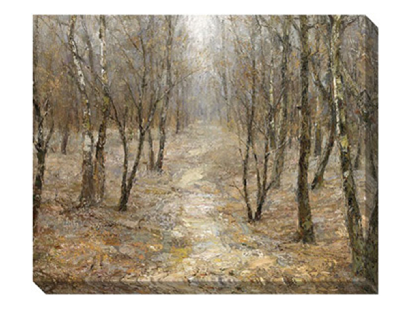 Path in the Trees Canvas Art