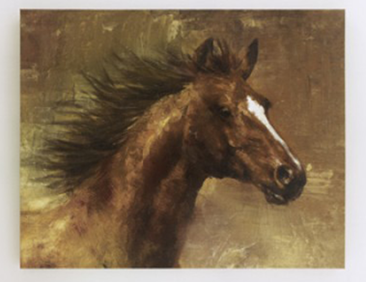 Brown Horse Canvas Art