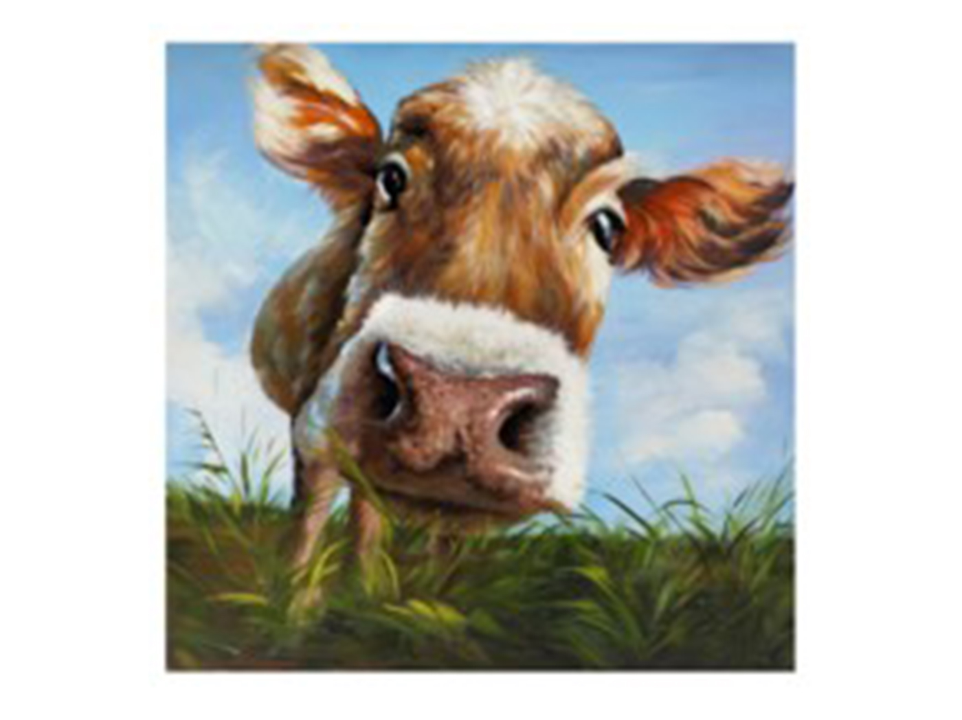 "Cow Closeup 39.5""W x 39.5""H"