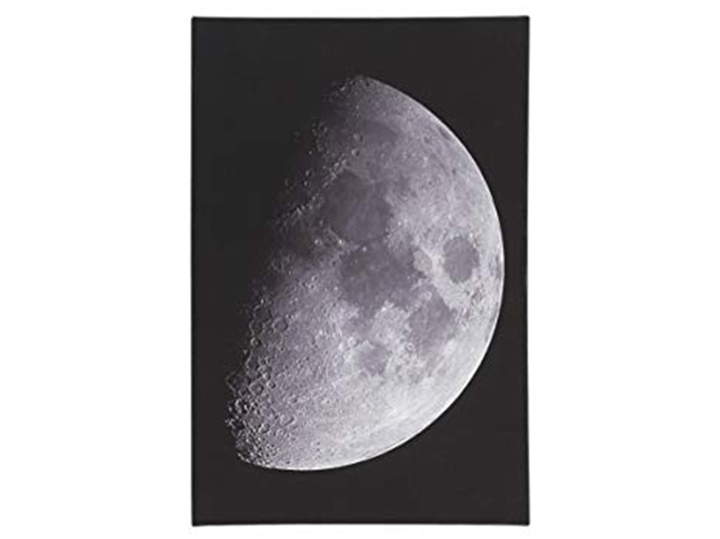 "Moon Canvas Art 16""W x 24""H"