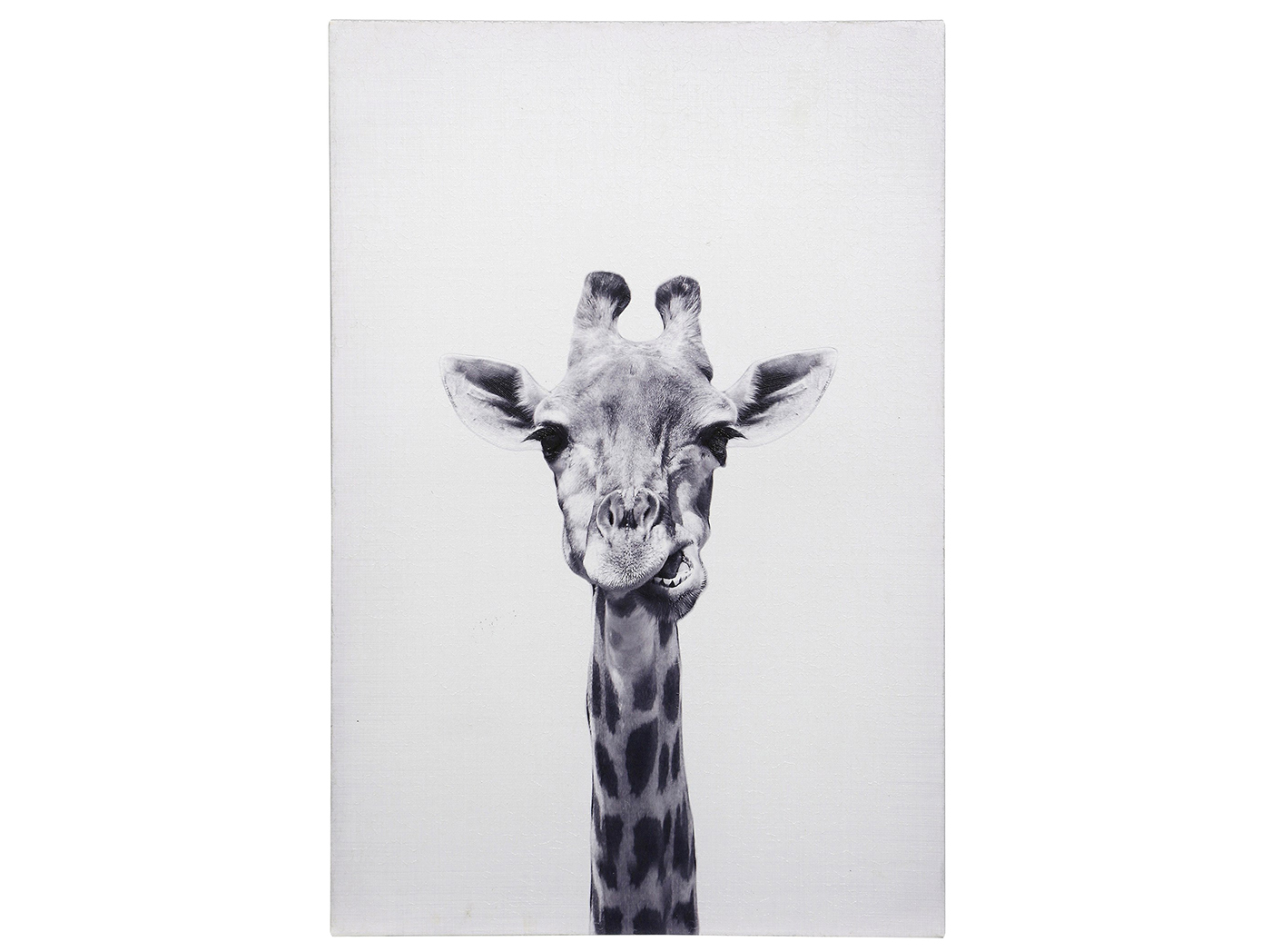 "Giraffe Black and White Hand Embellished Canvas 24""W x 36""H"