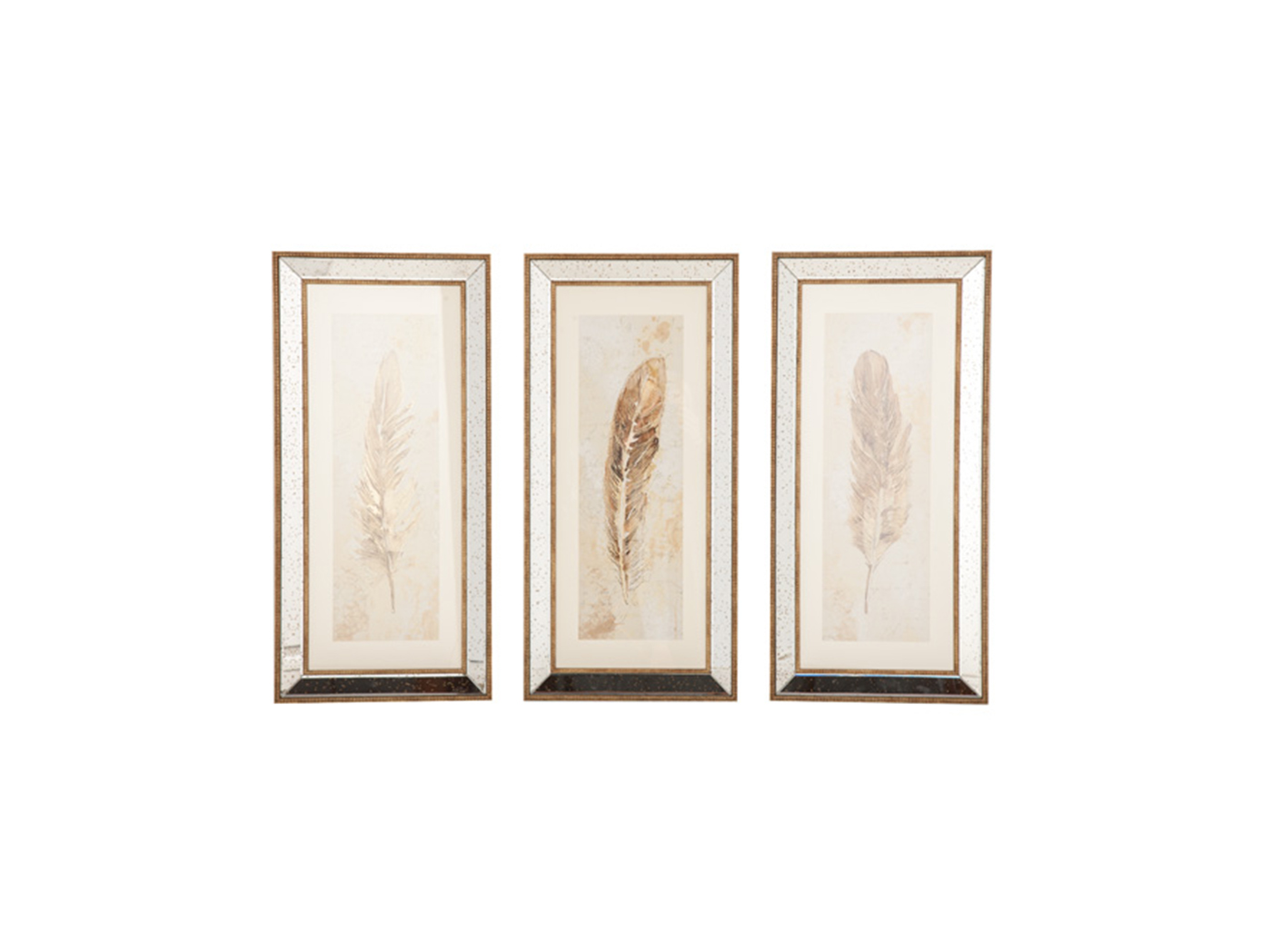 "Set/3 Feathers Framed Art 15""W x 32""H"
