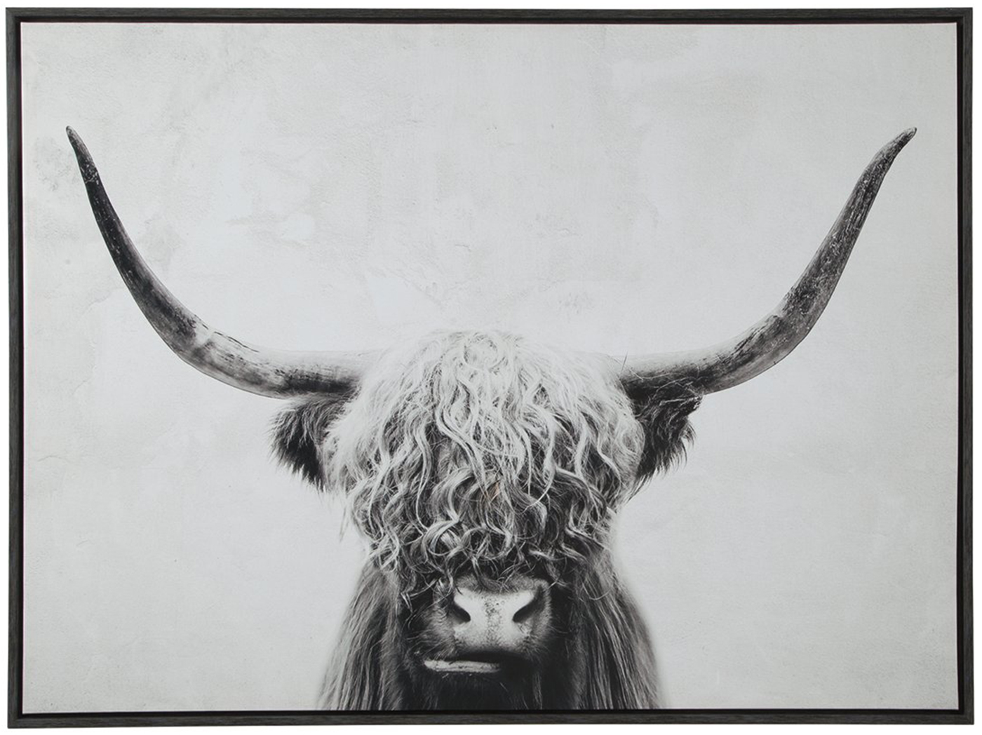 "Black and White Highland Cow Framed Canvas Art 48""W x 36""H"