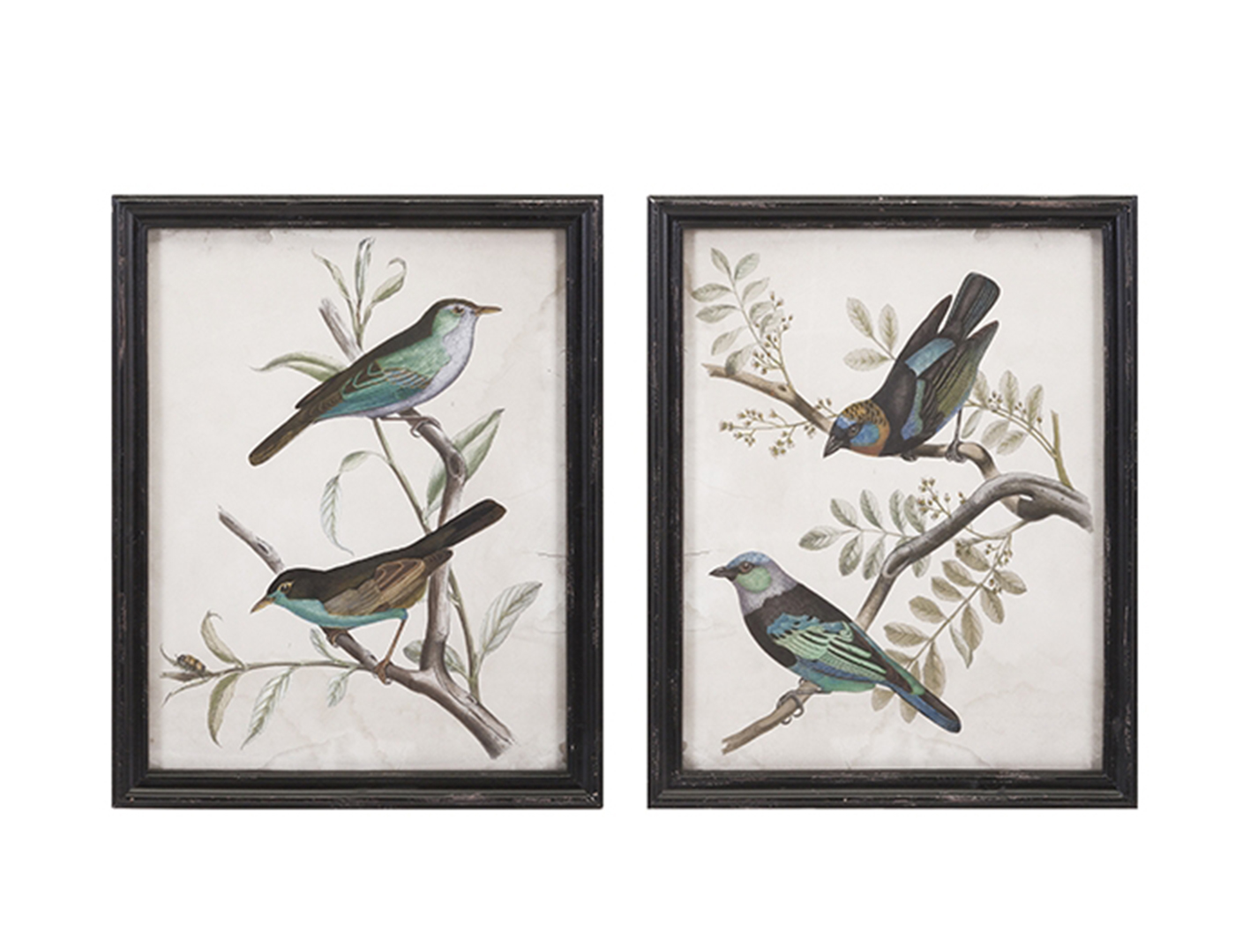 "Assorted Birds on Branches Wall Art 18.5""W x 23.5""H"