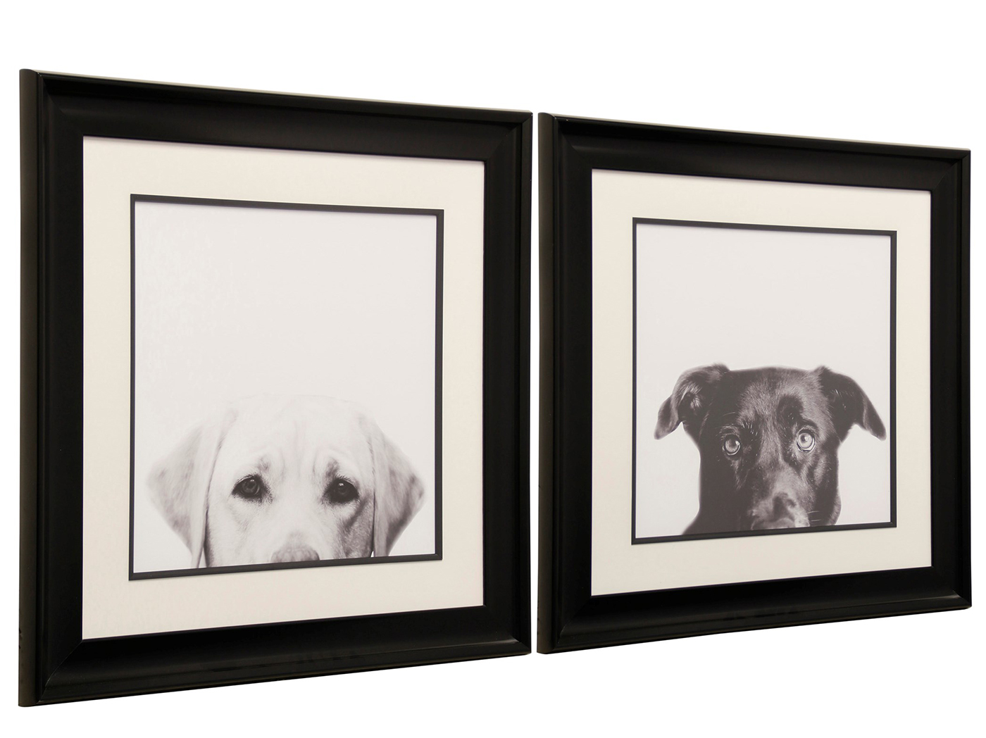 "Assorted Black or White Dog Framed Prints Each 32""W x 32""H"
