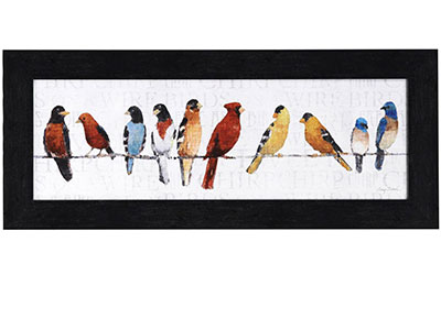 "Colorful Birds Framed Print 42""W x 18""H"