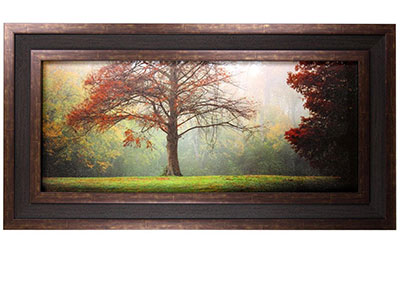 "Fall Tree Framed Print 57""W x 29""H"