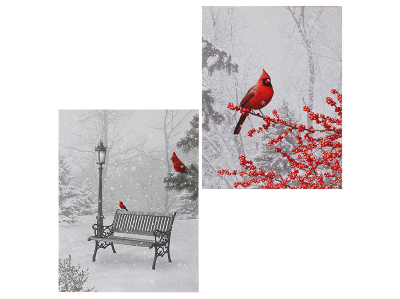 "Assorted Lighted Cardinal Print 18""W x 24""H"