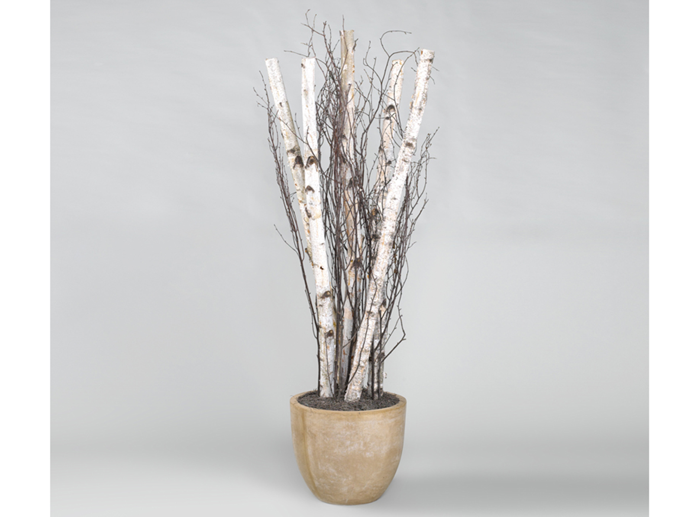 "Birch Poles and Branches in Planter 90""H"
