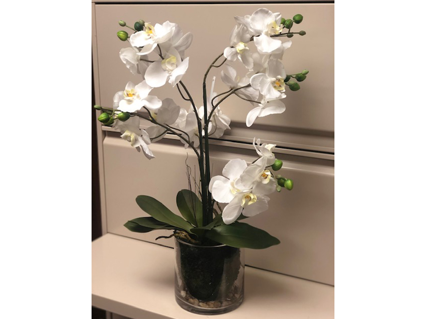 "White Orchids In Glass Bowl 24""H"