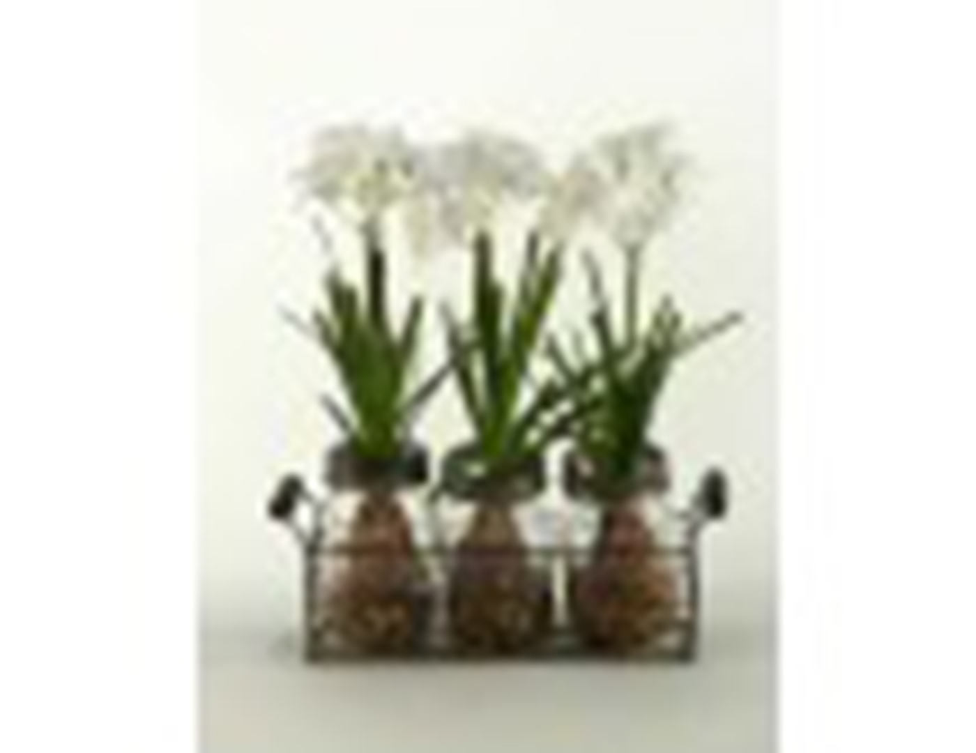 "White Flowers in 3 Glass Jars in Metal Holder 12""W x 14""H"