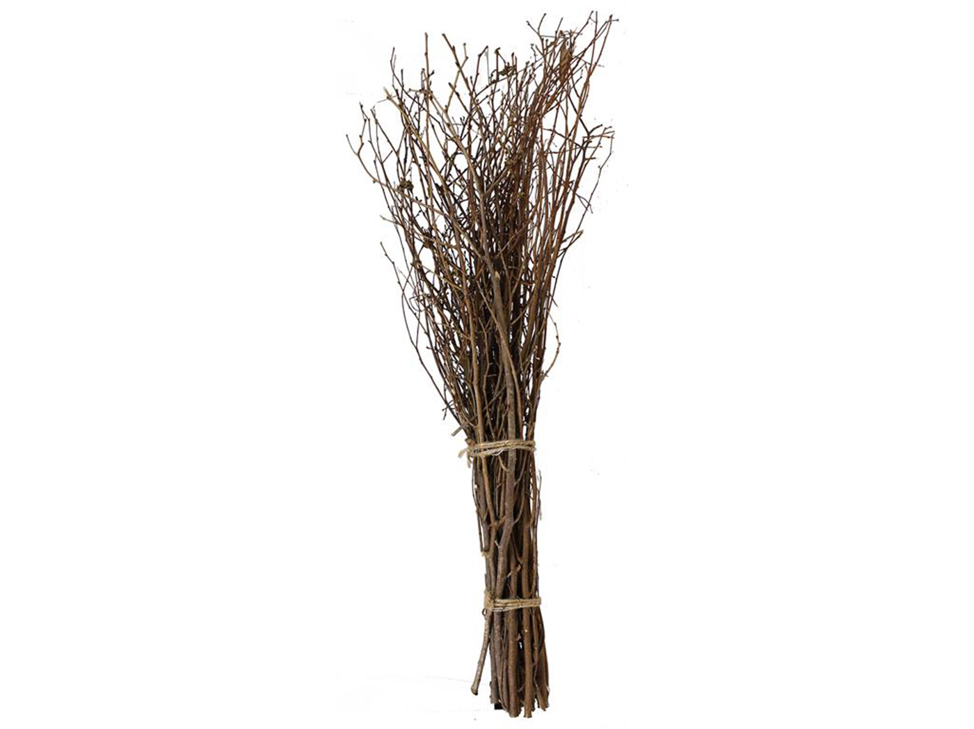 "Natural Twig Bundle 39.5""H"