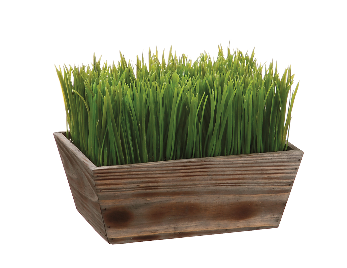 "Grass in Wood Planter 8""X7""X10""L"