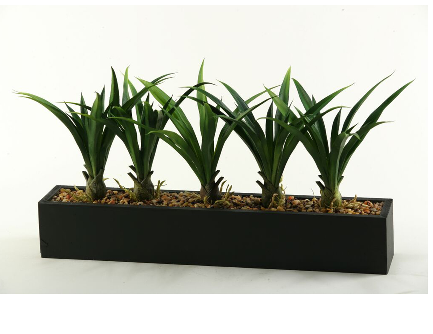 "Lily Grass in Long Planter 28""W x 14""H"