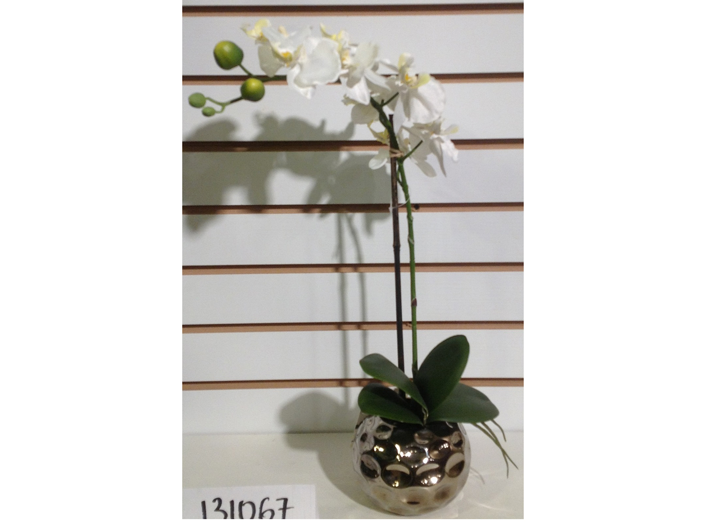 "Orchid in Silver Planter 8""W x 18""H"