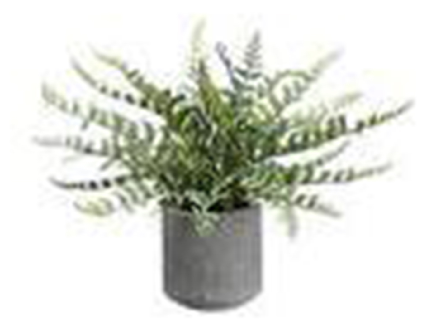 "Fern In Cement Pot 15""H"