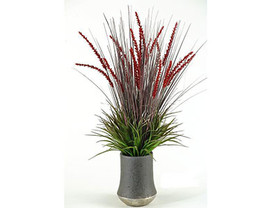 Onion Grass and Plumes in Planter 14X33""