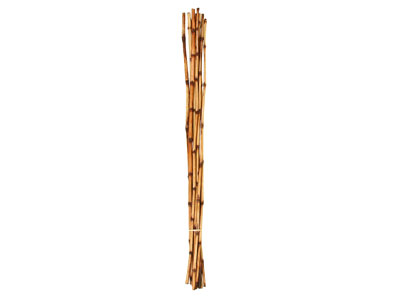 "Bamboo Sticks 48""H"