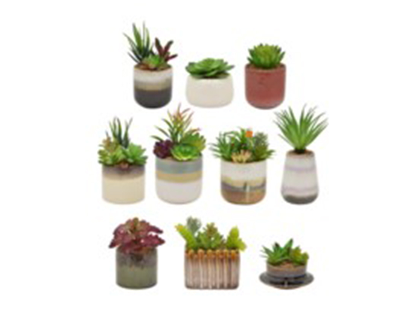 "Assorted Succulent in Ceramic Pot 4""W x 4.5""H"