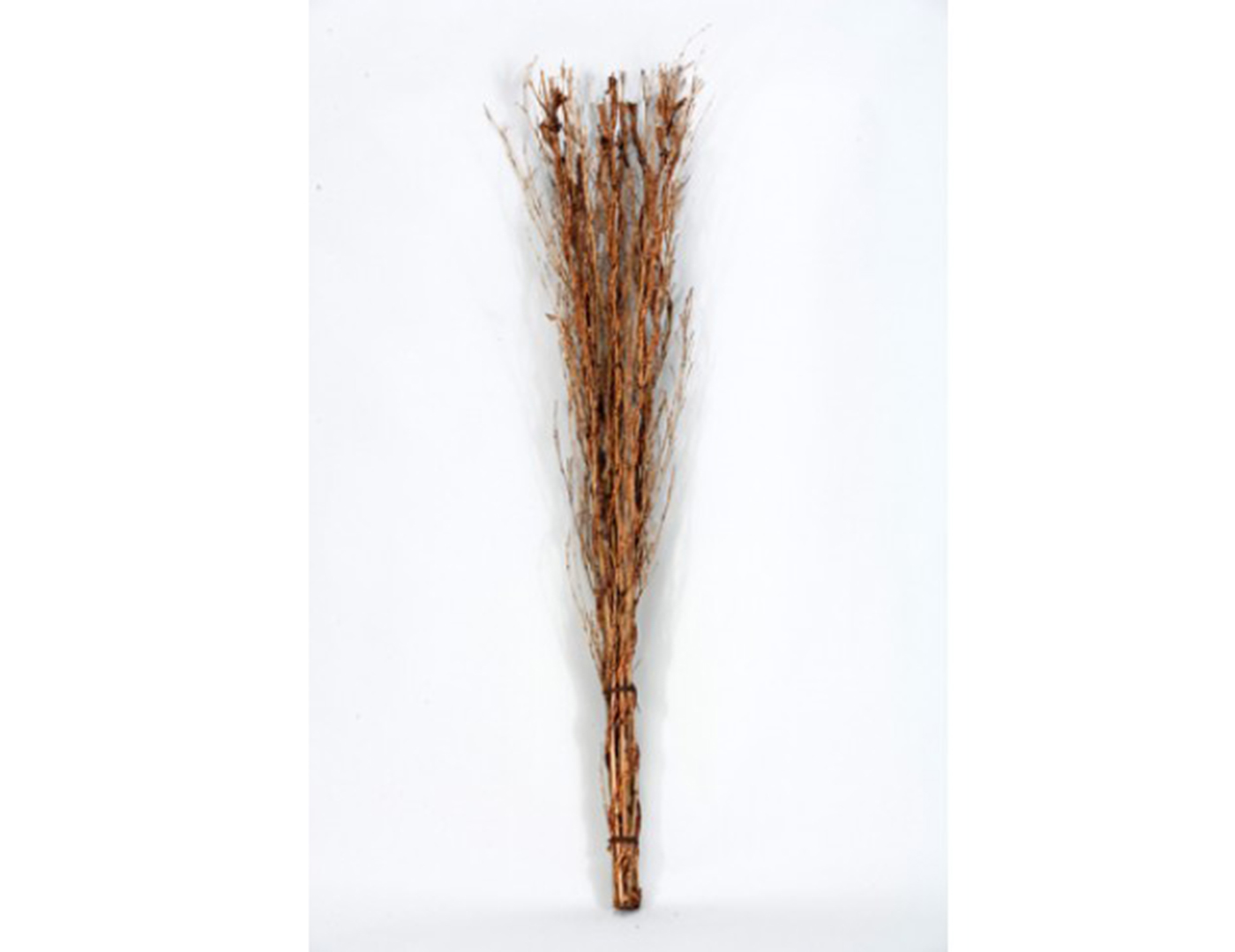 Natural Color Willow Sticks 13.5X49""
