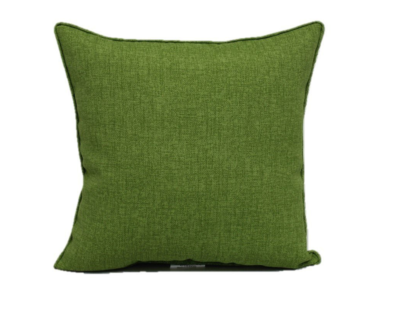 Kiwi Outdoor Pillow