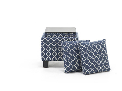 Storage Ottoman with Two Pillows