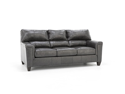 Dolan Leather Sofa