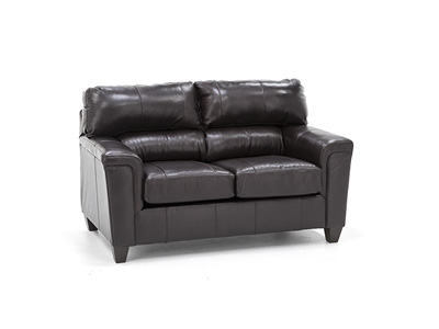 Dolan Leather Loveseat