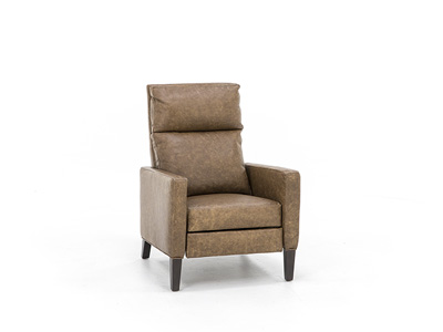 Miley Leather Power Recliner
