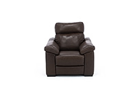 Gianna Leather Power Headrest Recliner