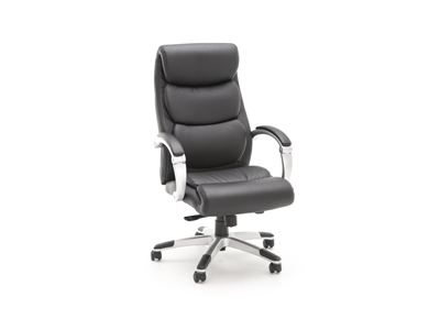 CaresoftPlus Ridgeback Chair