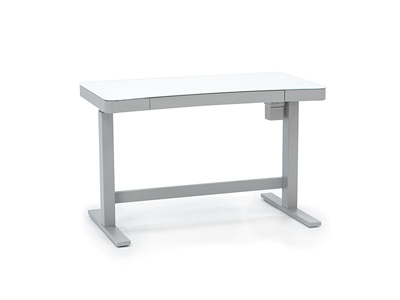 Ashford Power Adjustable Desk