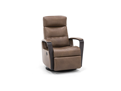 Peak Leather Power Glider Recliner