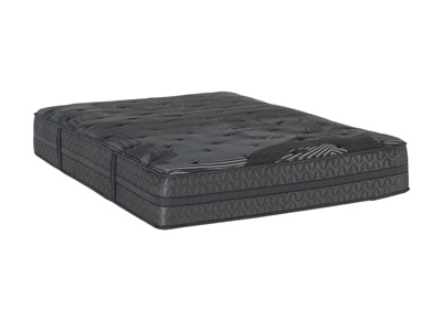 Dreams Concord Plush Queen Mattress