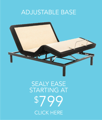 Sealy Ease Base