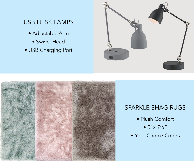Lamp and Rugs